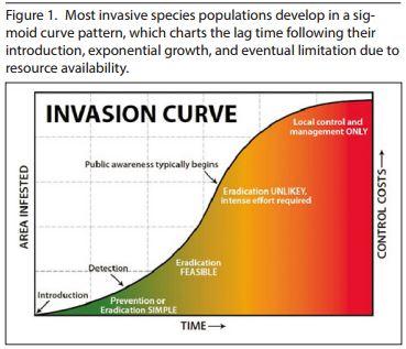 invasive-figure