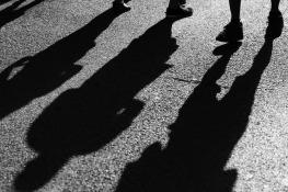 shadow-gov