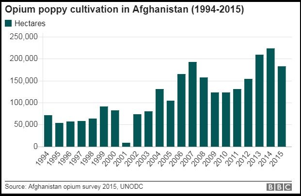 afghan-opium-production