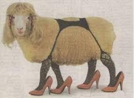 sexy-sheep