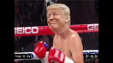 trump boxing